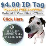 $4.00 Pet Tag bargain...now every pet in the neighborhood can afford protection!